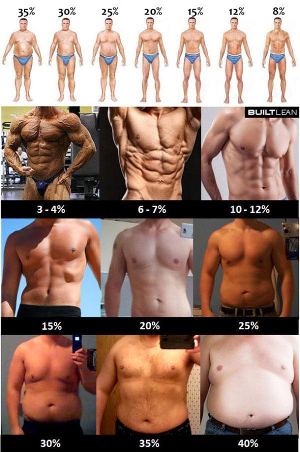 процент жира на человеке